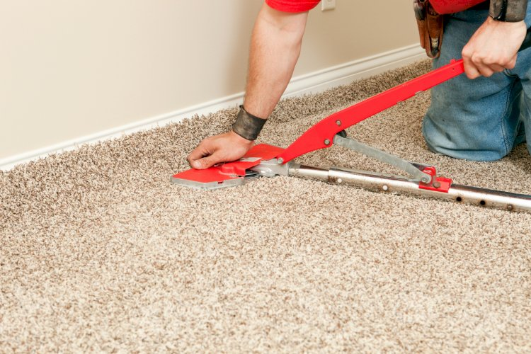 Get Ready with your Carpet Repair ideas and Worry Less about Pets