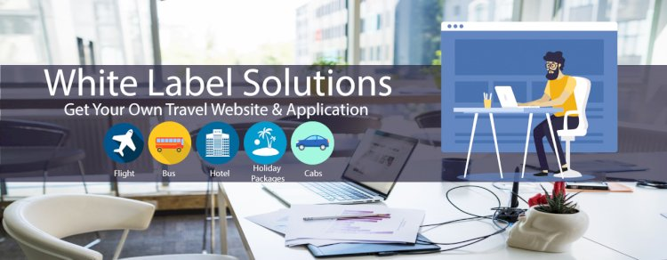 How Travel Portal Software with API Helps Travel Agencies to Enhance Their Resources