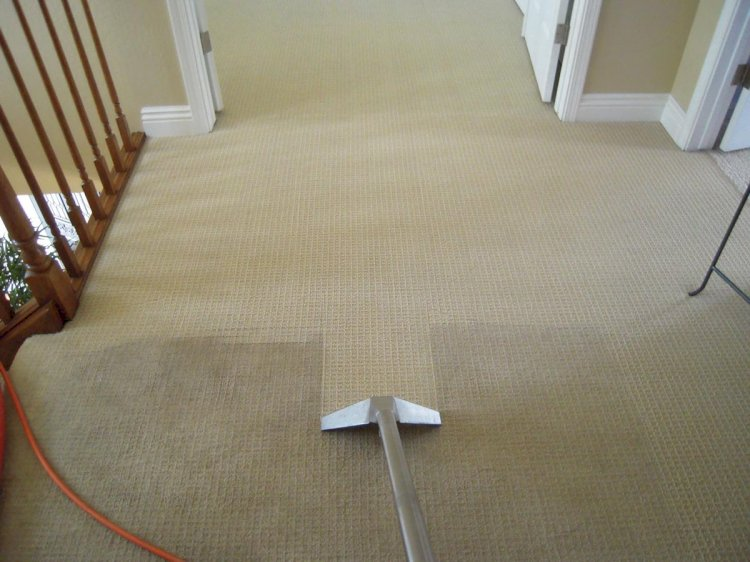 Professional hot water extraction as the most effective carpet cleaning method