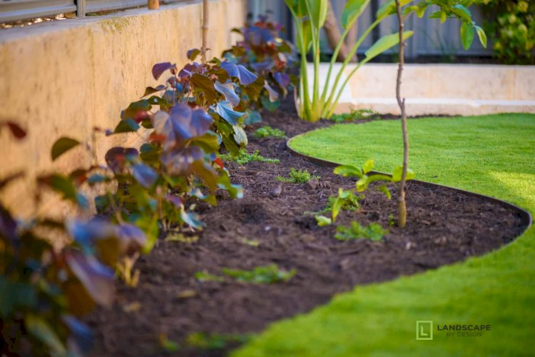 Get the Most From Your Garden with Garden Landscaping