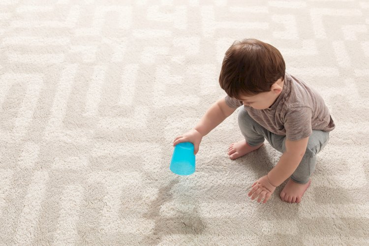 Top 7 tips for a wholesome Carpet cleaning experience