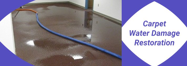 Sources and Prevention of Water Damage in Carpets