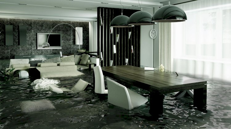 Common Sources of Water Damage in Carpets