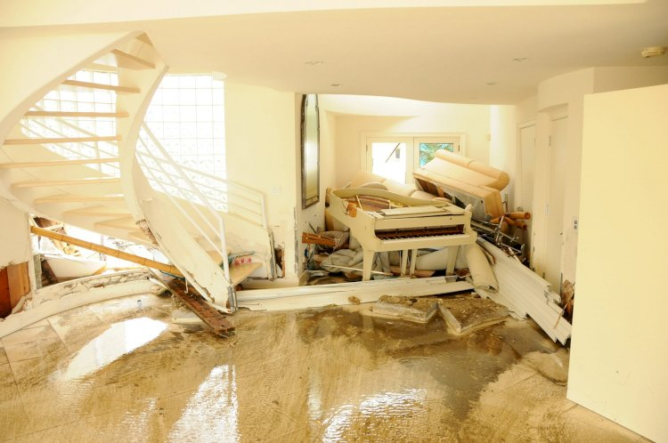 Why is It Important to Assess Carpet Damage?