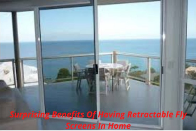 Surprising Benefits Of Having Retractable Fly Screens In Home