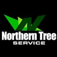 northerntree