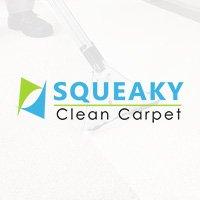 Squeaky Clean Carpet